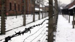 Auschwitz – Birkenau, Wroclaw