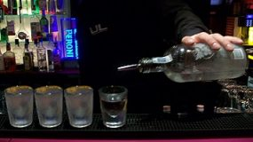 Polish Vodka Tasting, Lublin