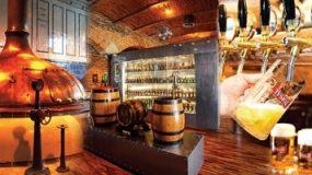 Brewery Tour, Katowice